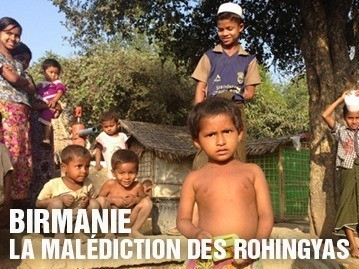 Birmanie – La malédiction des rohingyas
